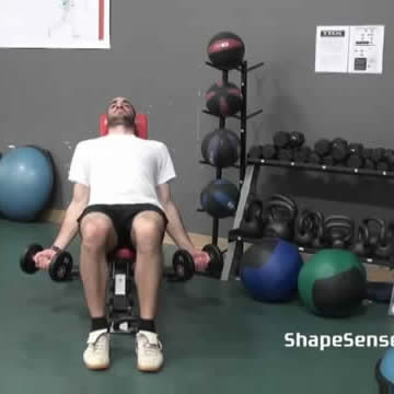 An image of a man performing the incline dumbbell curl exercise.